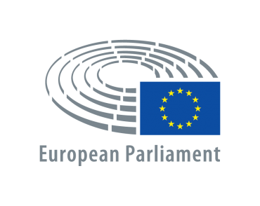 Presidency conclusions on human rights in the EU – MEPs write to Austrian Presidency