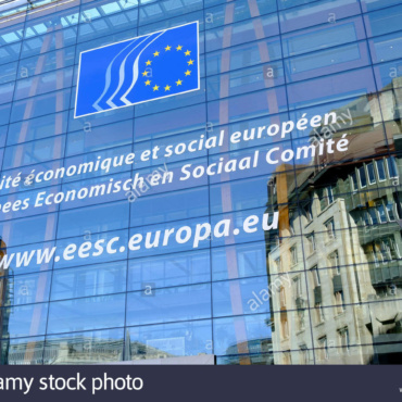 Nomination of the VP of the Board of Ordo Iuris to the EESC Diversity Europe Group – MEPs address the Presidency of the Group